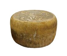 Picture of AGED PECORINO CANESTRATO